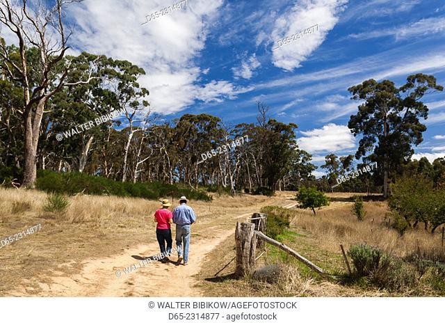 Australia, South Australia, Adelaide Hills, Hahndorf, fields and sculpture garden