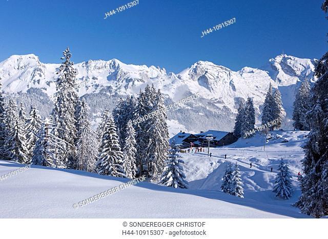 Mountain, mountains, winter, snow, canton, St. Gallen, St. Gall, Switzerland, Europe, Toggenburg, tree, trees, snow, Alpstein, Säntis, Sellamatt, Alt St
