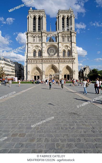 France - Ile de France - Paris - The cathedral Notre Dame in Paris
