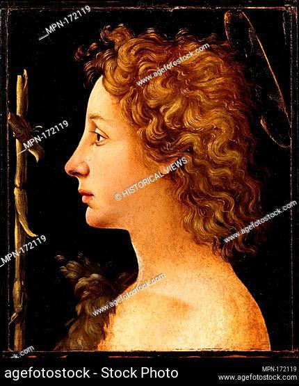 The Young Saint John the Baptist. Artist: Piero di Cosimo (Piero di Lorenzo di Piero d'Antonio) (Italian, Florence 1462-1522 Florence); Medium: Tempera and oil...