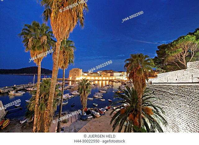 Palm trees , habour, old Town Center of Dubrovnik at dusk , Dalmation Coast, Croatia
