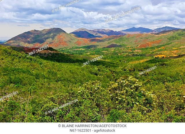 Scenery, Province Sud Great South region of Grand Terre the main island, New Caledonia
