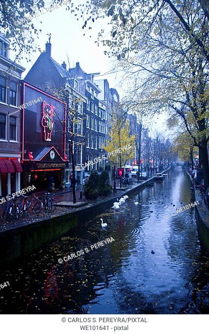View in Amsterdam, Netherlands