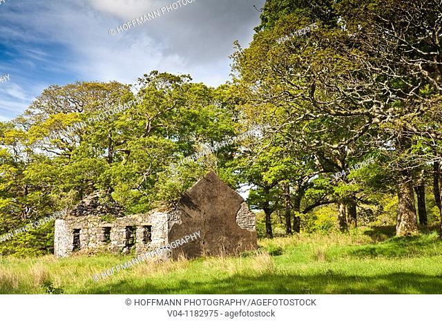 Decayed famine house in Connemara, County Mayo, Ireland, Europe