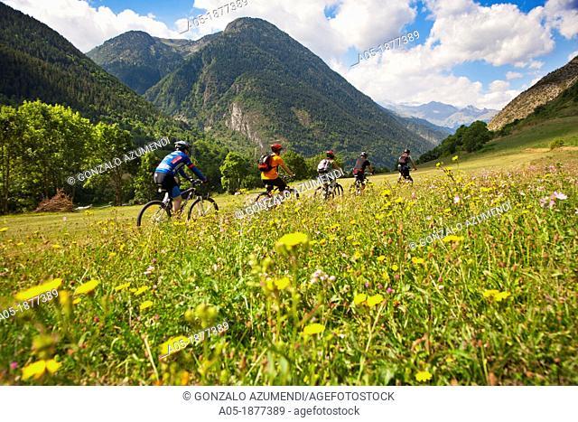 BTT in the vicinity of Arties-Salardu-Unha  Arties  Naut Aran  Aran Valley  Pyrenees  Lerida  Lleida  Catalunya  Spain