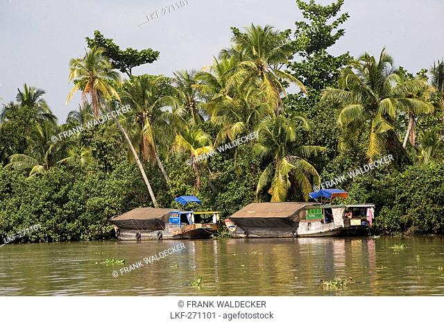 Boats on the Mekong River, Mekong Delta, Can Tho Province, Vietnam, Asia