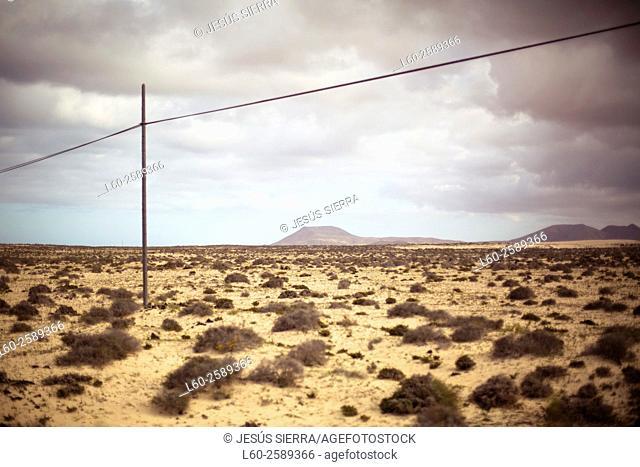Corralejo sand dunes. Fuerteventura. Canary Islands. Spain