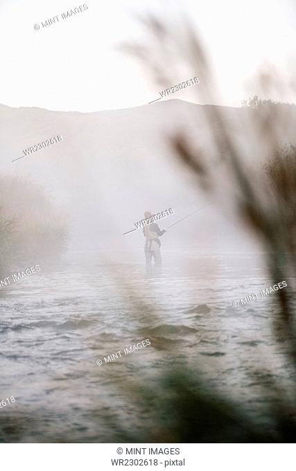 A woman fisherman fly fishing, standing in waders in thigh deep water