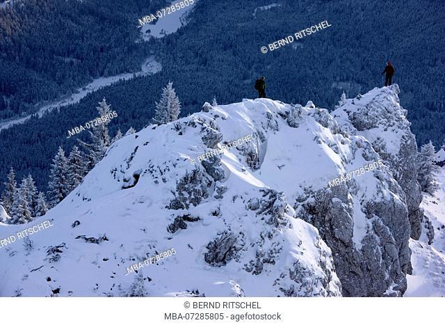 Winter hike to the Teufelstättkopf (mountain), Ammergau Alps, near Oberammergau, Upper Bavaria, Bavaria, Germany