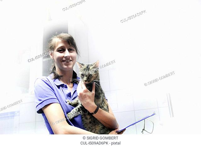Vet holding domestic cat
