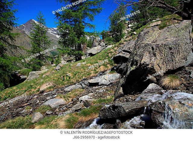 Landscape on the ascent to the Chabod refuge in the valley Valsavarenche. National park Gran Paradiso. Italy