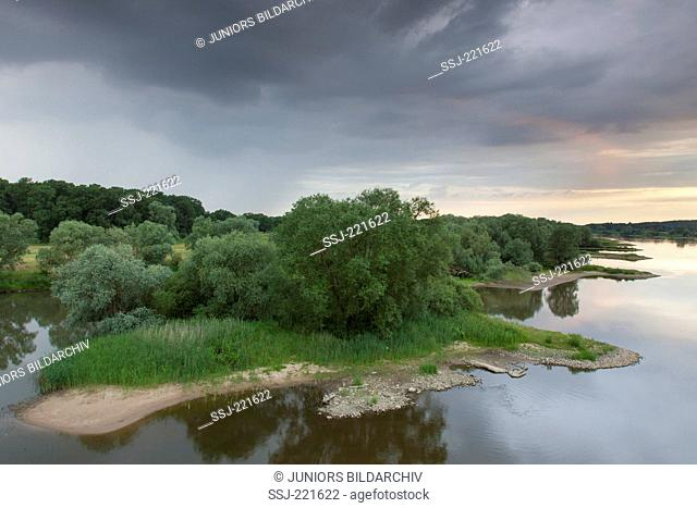 Thunderclouds at the bank of the river Elbe in the Biosphaerenreservat Elbtalaue, Niedersachsen, Germany
