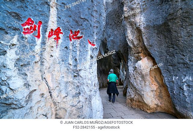 The Stone Forest, Shilin Yi Autonomous County, Yunnan Province, China, Asia, UNESCO World Heritage Site