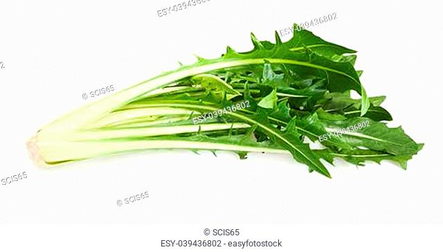 Catalogna salad isolated on white