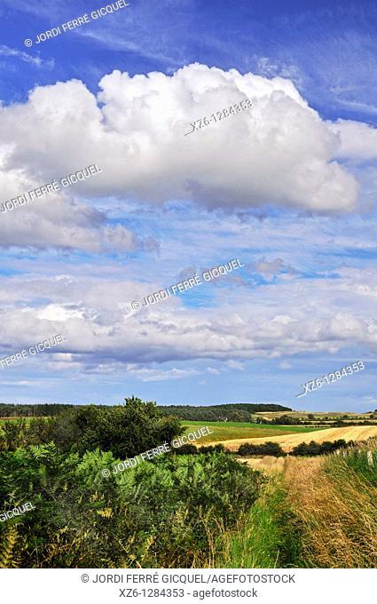 scottish landcape, Urquhart, Moray, Scotland, United Kingdom, Europe