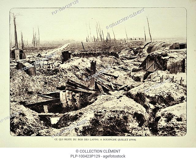 Trenches and broken trees of forest after bombardment / shelling at Boezinge in Flanders during the First World War, Belgium