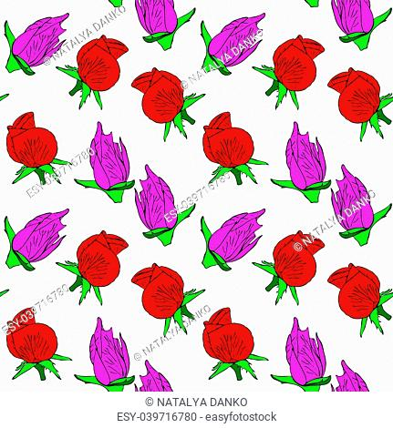 buds of a red and pink rose, a repeating seamless pattern on a white background