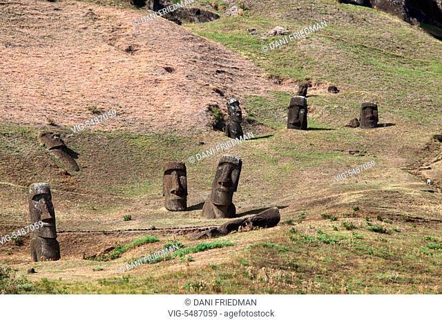 Moai statues on the slopes of the Rano Raraku quarry, Rapa Nui, Easter Island, Chile. - RAPA NUI, EASTER ISLAND, CHILE, 19/03/2010