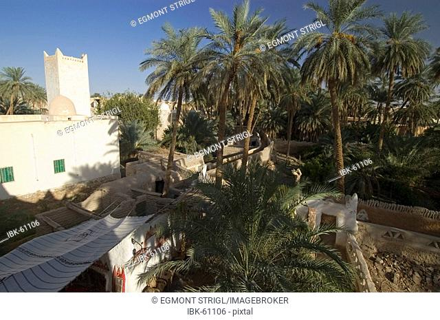 Palm garden at Ghadames, Ghadamis, Unesco world heritage site, Libya
