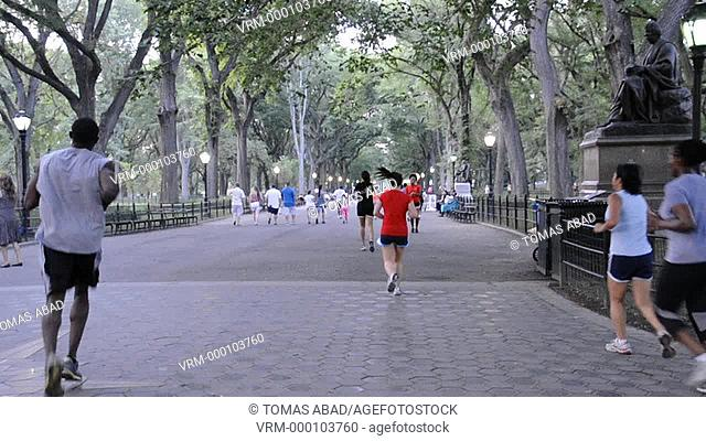 Summer in Central Park in August, New York City
