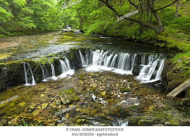 Sgwd y Bedol (Horseshoe Falls) waterfalls on the Nedd Fechan in the Brecon Beacons National Park near Pontneddfechan, Powys, Wales