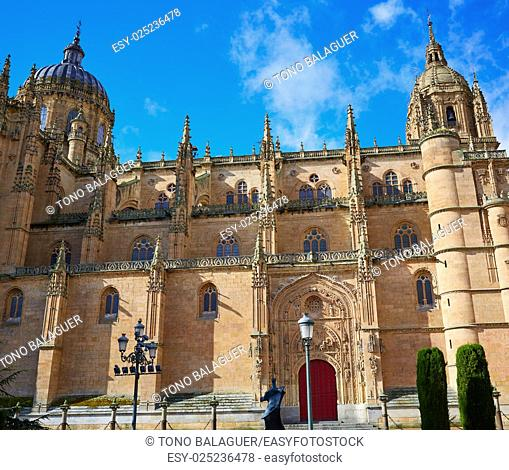Salamanca Cathedral facade in Spain by the Via de la Plata way to Santiago