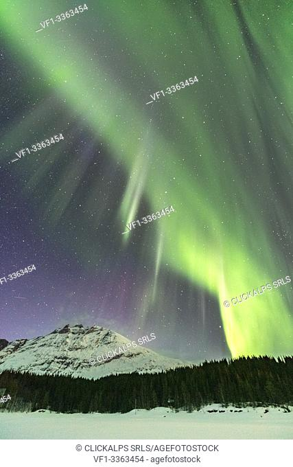 Northern lights in the sky above Skoddebergvatnet lake. Grovfjord, Troms county, Northern Norway, Norway
