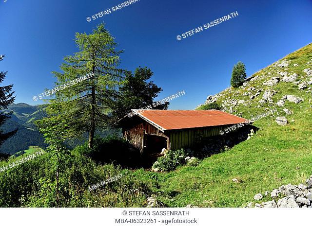 Field barn on alpine meadow