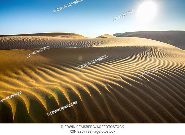 Liwa Oasis, Abu Dhabi , United Arab Emirates -, vast desert landscape scattered with rippling sand dunes The Empty Quarter (Rub' al Khali) of the arabian...