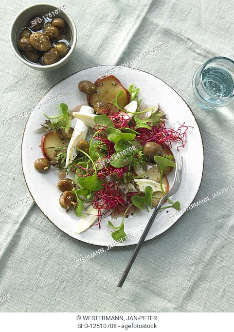 Purslane with fried apple, goat's cheese, beetroot shoots and chestnuts in honey