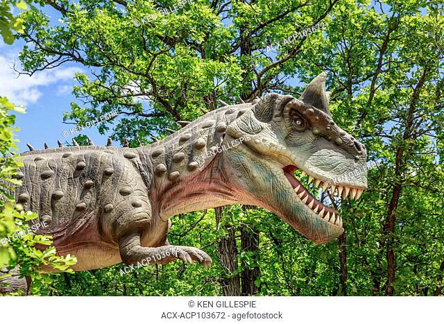 Carnotaurus at Dinosaurs Alive, a carnivorous dinosaur, Assiniboine Park Zoo, Winnipeg, Manitoba, Canada