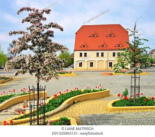 Grossraeschen Markt - Grossraeschen square 02