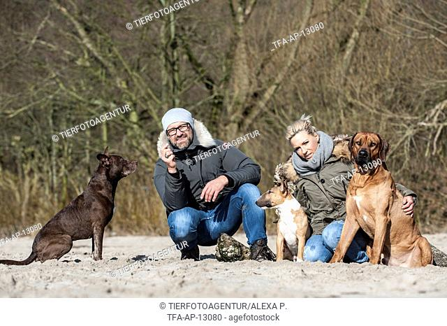 man and woman with 3 dogs