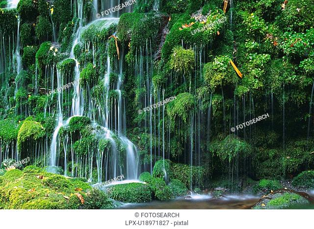 a Waterfall, Surrounded By Several Trees, Side View, Akita Prefecture, Japan