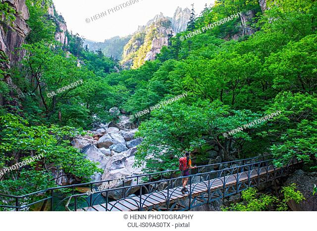 Female hiker crossing footbridge on way to Daecheongbong peak, Seoraksan National Park in South Korea