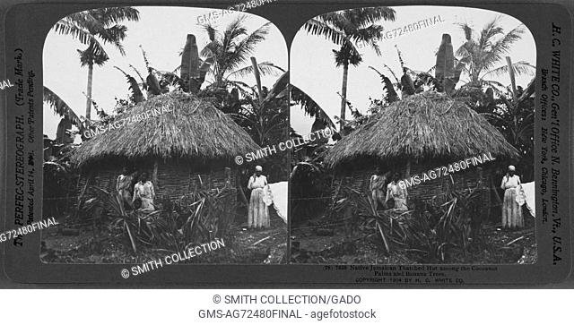 Native Jamaican thatched hut among the Cocoanut Palms and Banana Trees, Jamaica, 1904. From the New York Public Library