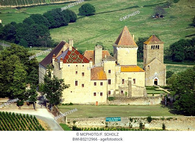 castle Chateau Pierreclos, France, Burgundy