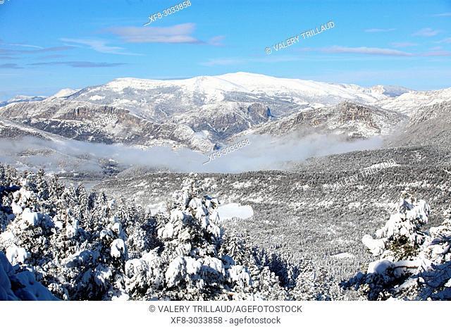 Snowy landscape, Col de Bleine, Prealpes d'Azur regional park, Alpes Maritimes, 06, PACA, France