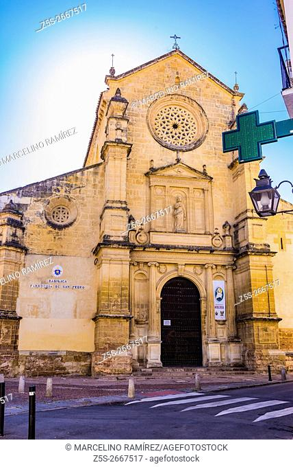 The Basilica of San Pedro is one of the denominated fernandinas churches located in Córdoba, Andalusia, Spain, Europe