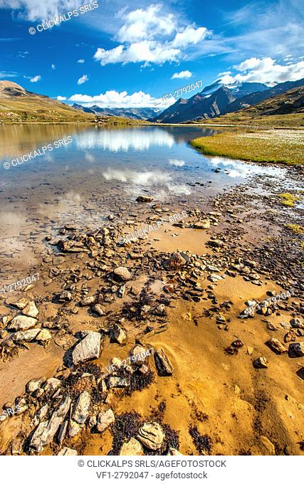Clouds reflecting in the crystal clear water of a small Alpine lake by Gavia Pass. On the right-hand side a group of cotton-grass (eriophorus) is blooming...