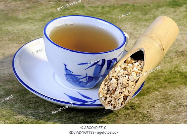 Cup of Chinese Angelica tea, Angelicae sinensis Radix