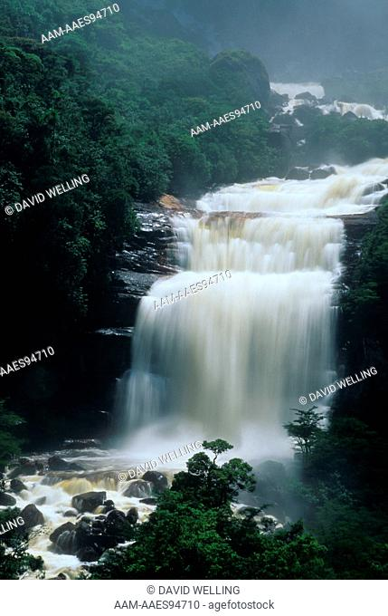 Angel Falls: Base of Falls Canaima National Park Venezuela