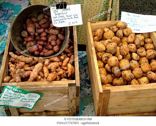 Montpelier, VT, Vermont, Farmer's Market, potatoes, Rose Fir Apple Potatoes, Red Thumb Fingerling, Yellow