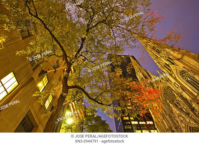 At right St. Patrick's Cathedral, 5th Avenue and 50th Street, Manhattan, New York, USA