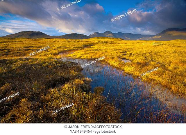Scotland, Scottish Highlands, Rannoch Moor. Early morning sun on Rannoch Moor with the dominating peak of the Black Mount in the distance