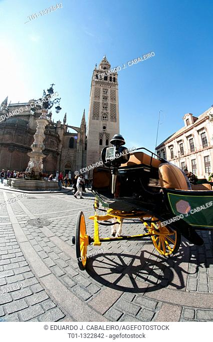 Fish eye  Horse carriage in front of the Giralda in Seville