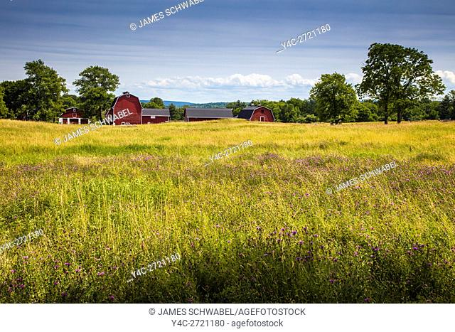Red barns in Knox Farm State Park in town of East Aurora in Western New York state