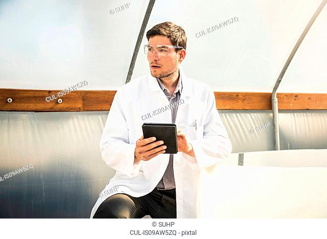 Scientist using digital tablet in plant growth research centre poly tunnel