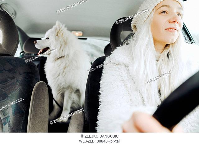 White dressed young woman driving car with white dog on the backseat