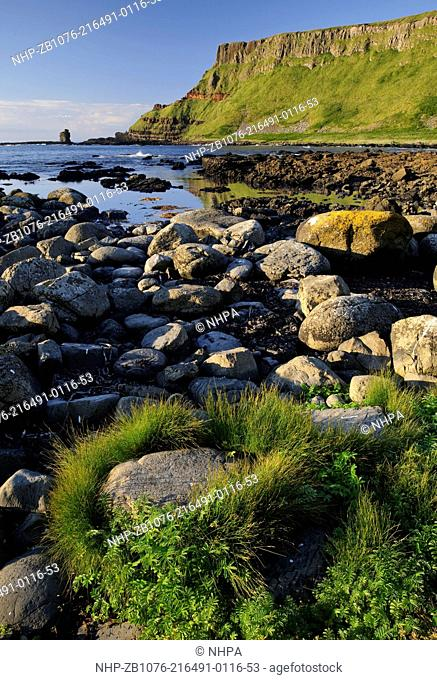 The Giant's Causeway, County Antrim, Northern Ireland The Giant's Causeway, a UNESCO World Heritage Site, is an area of interlocking basalt columns on the...